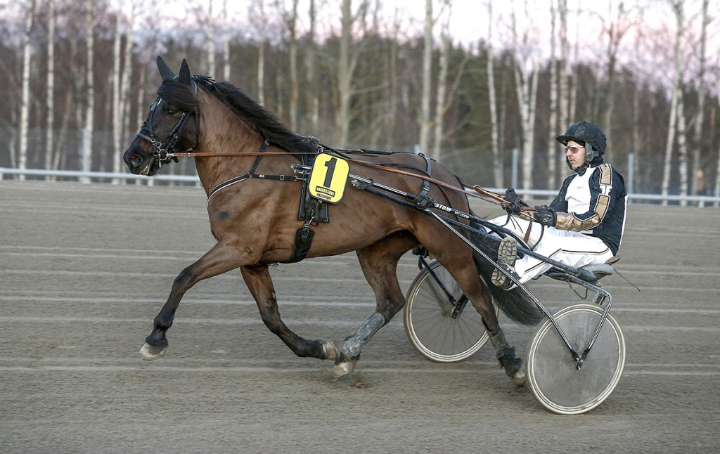 Foto: Hanold/ALN Romme 20140321 Moas Jerva Li med Fredrik Fransson