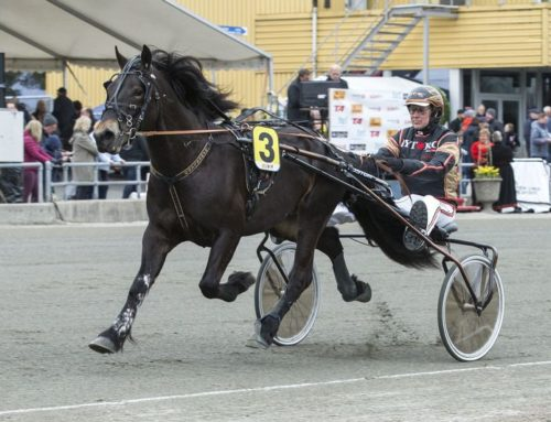 Lome Diamant till Monster Trav