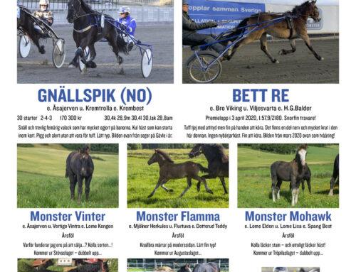 Monsterhästar på auktion 20201018